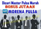 Dicari Master Pulsa Murah Bonus Jutaan